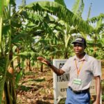 Head of Facilities Management Services (FMS) at International Institute of Tropical Agriculture (IITA) 4