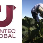Contec Global Group Job Vacancies [3 Positions] 10