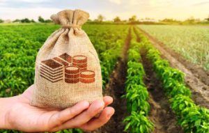 Farmers Gets ₦250,000 Application with no Interest Rate 1